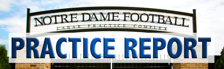 Practice_report_banner_edited-1_medium