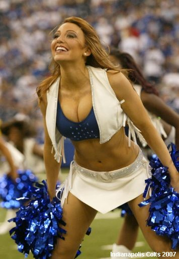 Coltscheer_medium