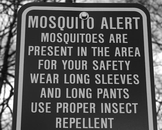 Mosquitosign