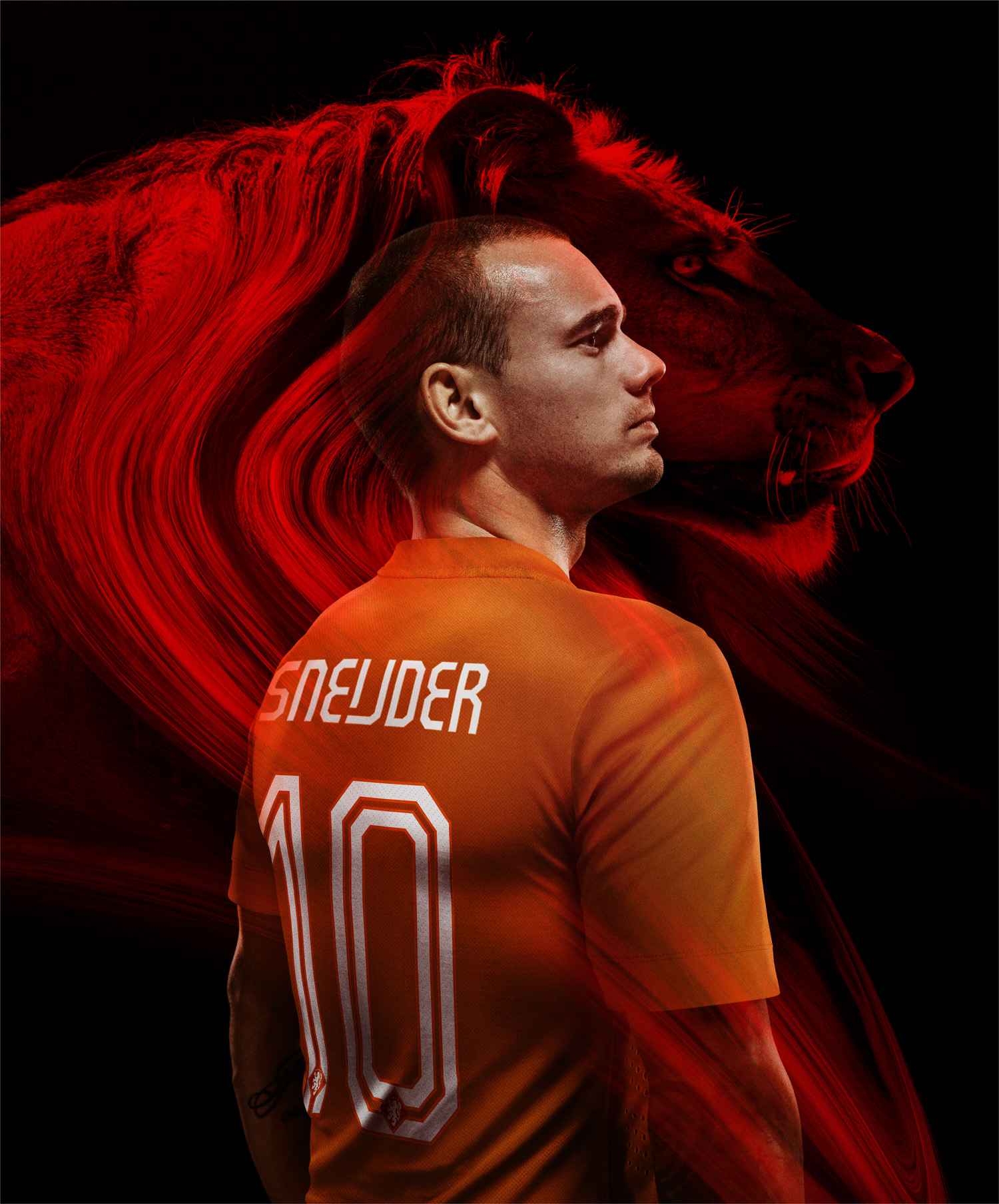 Sneijder_home_original_medium
