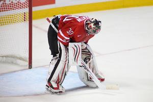 Kevin Prendergrast On Canadian Goaltending
