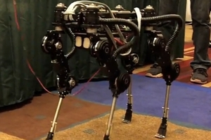 SimLab Quadraped Robot Dog