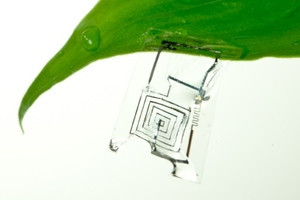 Biodegradable circuit board