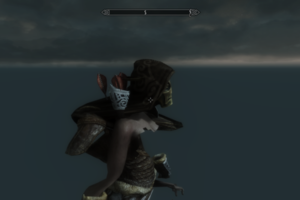 Reddit Skyrim glitch