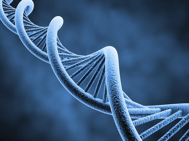 dna (FROM SHUTTERSTOCK)