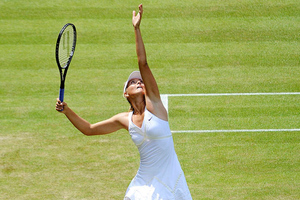 sharapova (wikipedia)