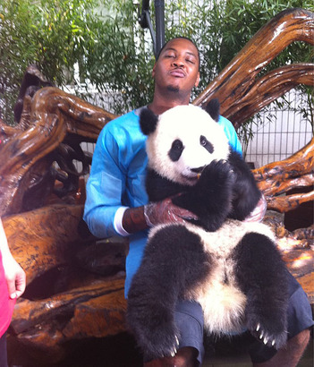 Carmelo_anthony_and_his_panda_friend