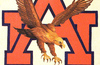 Wareagle_small