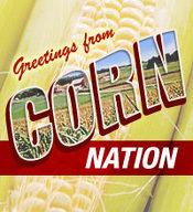 Cornnation_medium