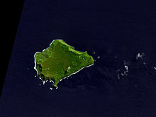 220px-inaccessible_island_aster_medium