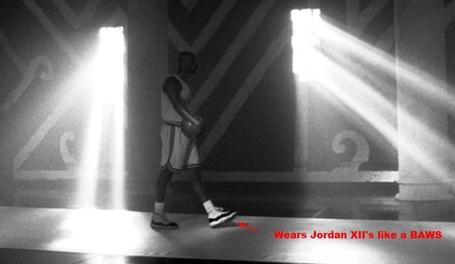 02-_jordan_12s_medium