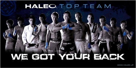 Haleo_medium