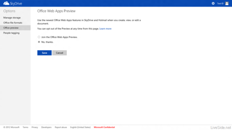 Skydrive-office-web-apps-preview_medium