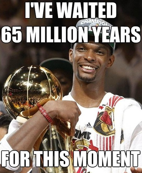 Chris-bosh-meme-3_medium