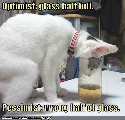 Funny-pictures-cat-has-a-half-full-glass_medium