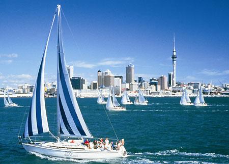 Auckland450_medium