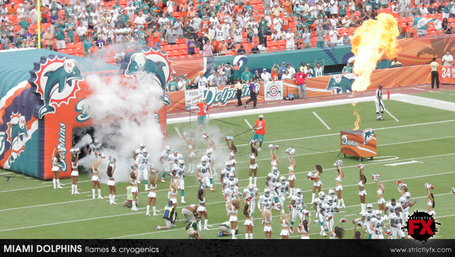 Miami_dolphins06_medium
