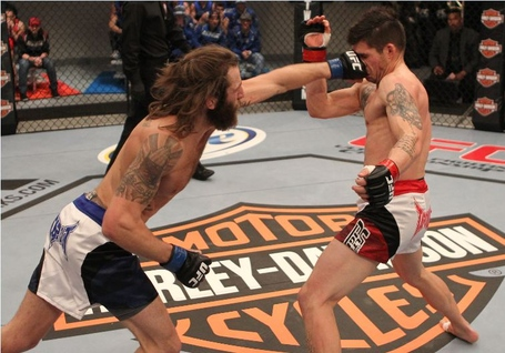 Chiesa-larsen-fight-0-417_jpg_medium