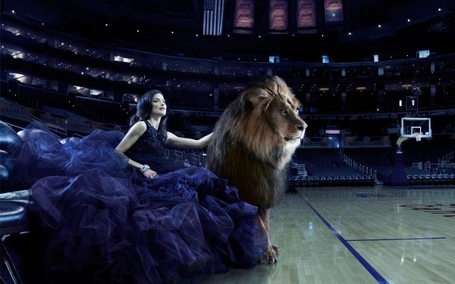 Beauty-lion-basketball-co-600x375_medium