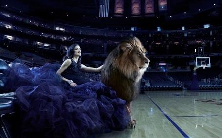 Beauty-lion-basketball-co-600x375_medium