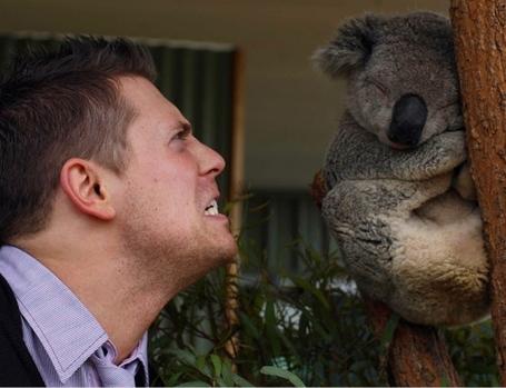 The-miz-playing-with-koala-animal_medium