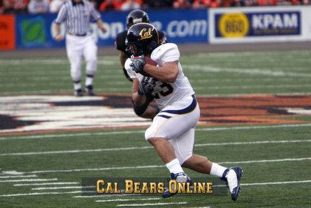 Cal_bears_will_taufoou_1096_medium