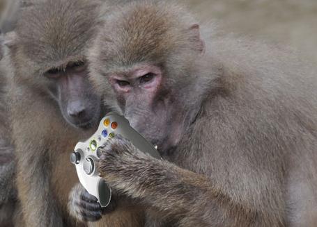 Monkey_controller_medium