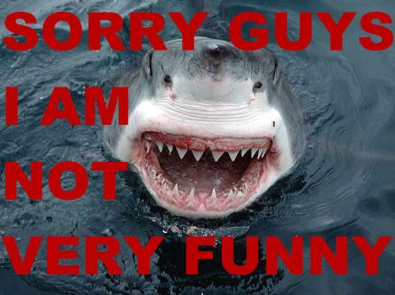 Shark-not-funny_medium