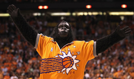 05-phoenix-suns-gorilla-1_medium