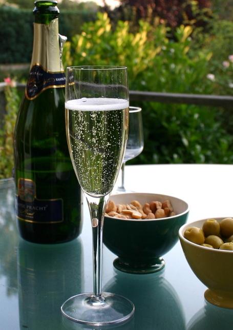 Champagne_flute_and_bottle_medium