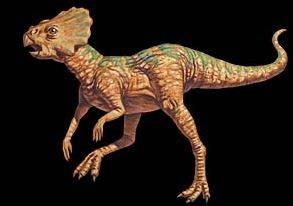 Microceratops_medium