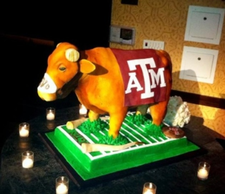 Cakebevo_png_medium