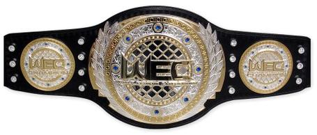 Wec-belt_medium