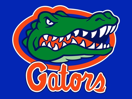 Florida_gators3_medium