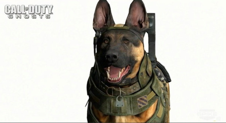 A778143a-693b-4d7b-a842-b3f9dbb051a3_call-of-duty-dog_medium