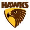 Hawthorn-hawks-jumpers_medium