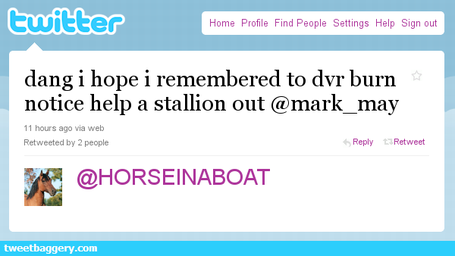 Horse_in_a_boat_medium