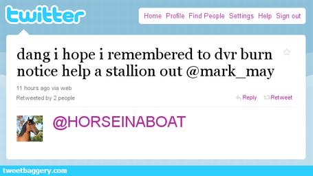 Horse_in_a_boat_medium