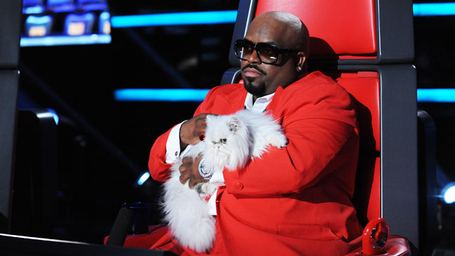 Ceelo_purrfect_cat_a_h_medium