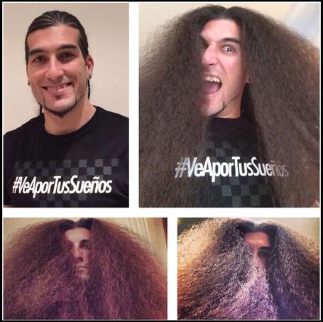 Pinto-hair_medium