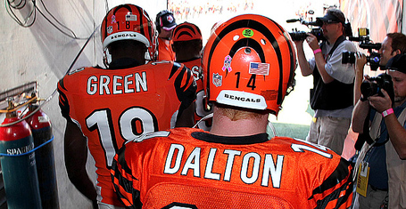 Dalton-mallett-green-103011_medium