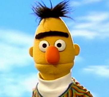 Bertportrait_medium