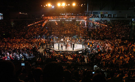 Ufc-octagon_medium