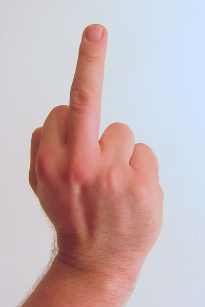 Gesture_raised_fist_with_middle_finger_lifted_medium