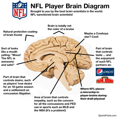 Nflbraindiagramj_medium