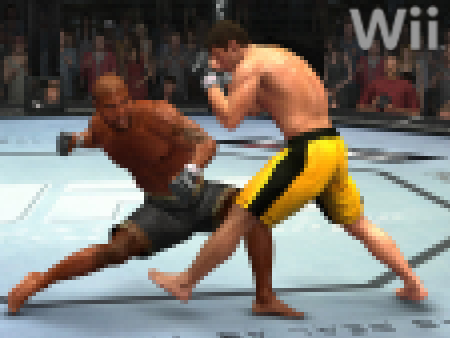Ufc-2009pixel_medium