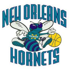 Tag_new_orleans_hornets_small_window_cling-arton30350-240x240_medium