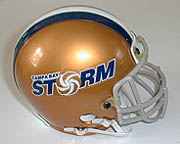 Tampa_bay_storm_medium