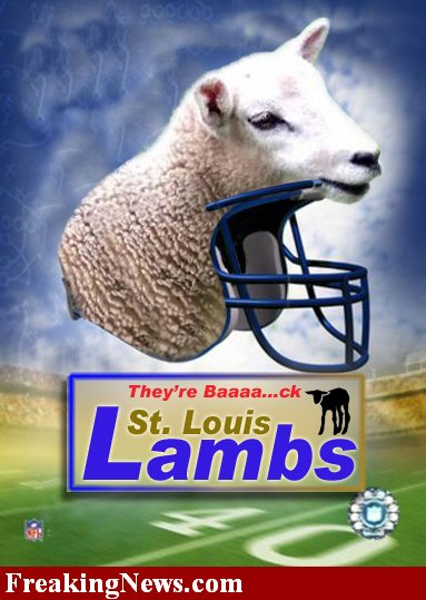 St-louis-lambs--11239_medium