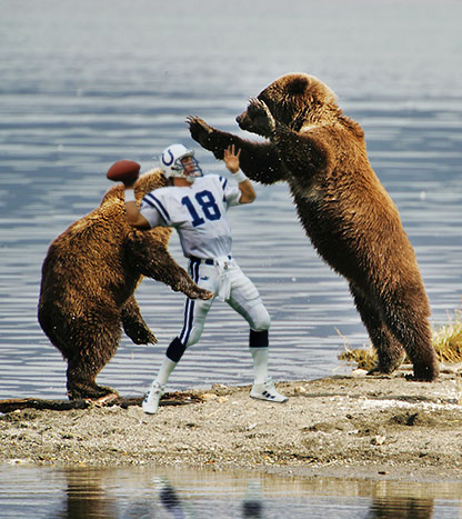 Bears-attacking-peyton-manning_medium